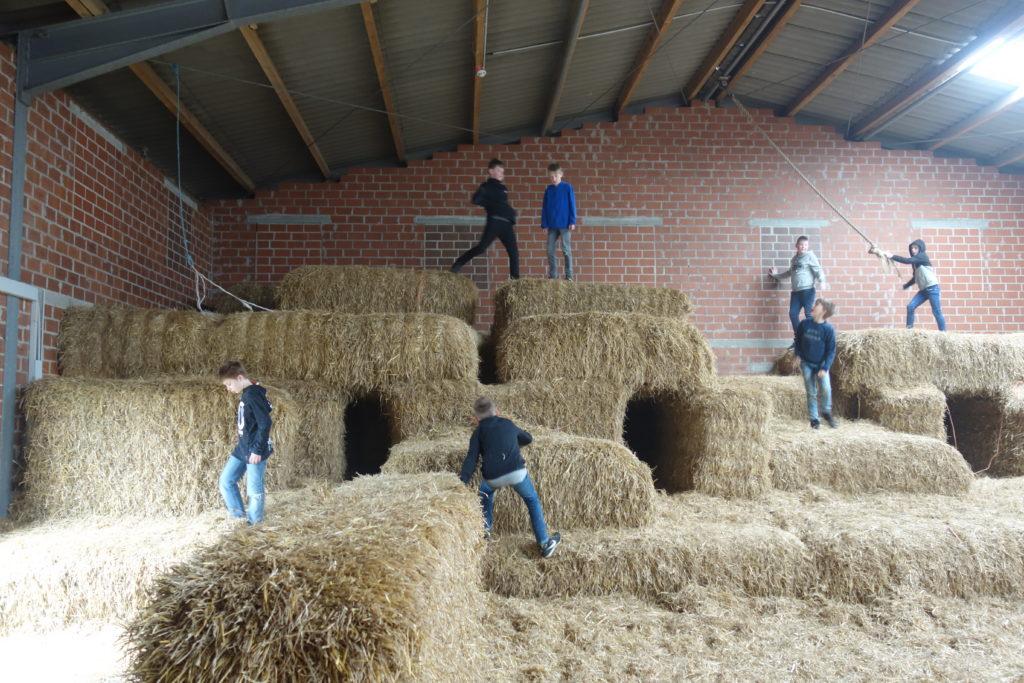 Poenenhof in Uedem - Primarstufe auf dem Bauernhof