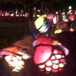 Lichtermeer in Hinsbeck